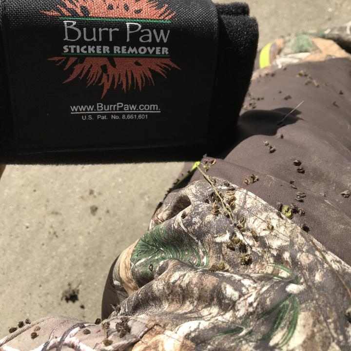 A Burr Paw sticker remover is used on a camouflage sleeve.