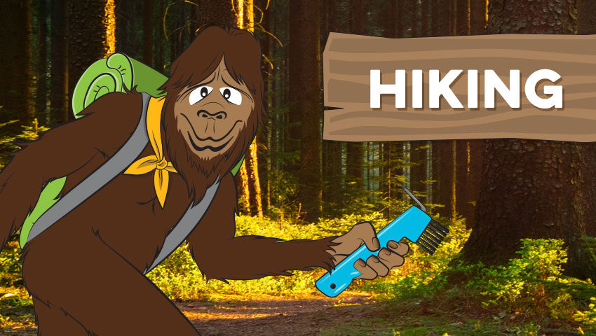 """Steward Bigfoot in sunlit forest with """"hiking"""" written on a cartoon wooden sign"""