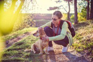 woman on a hike checking dog for ticks
